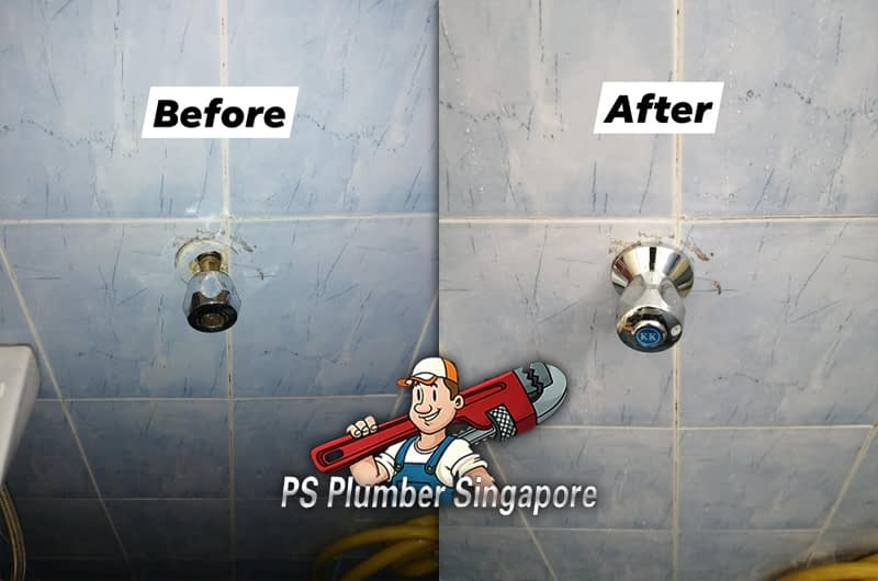 Exchange Shower Handle Valve In Lorong Limau
